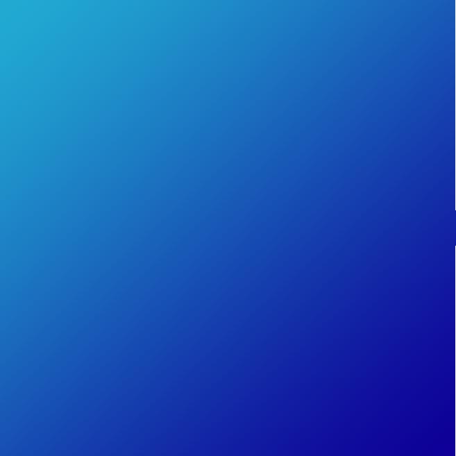 IWS - Intelligent Web Solutions